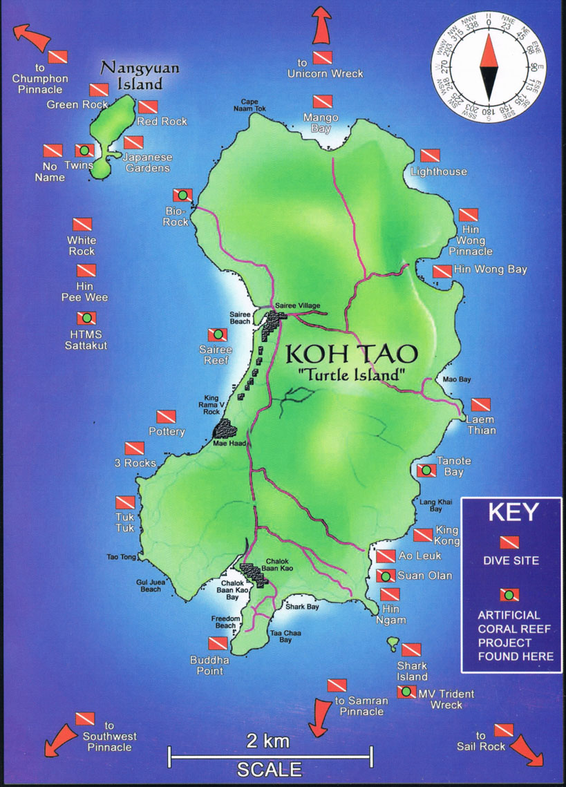 Diving Courses and Diving Trips around Koh Tao with Dive Wishes
