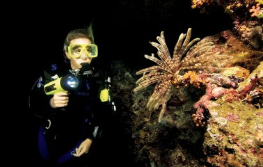 Night Dive Open Water Diver