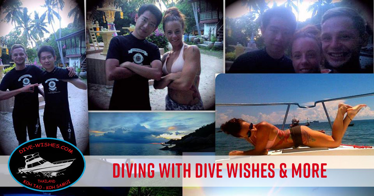 Dive Tours and Dive Courses